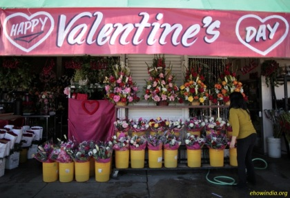 232044-demand-for-valentines-day-rose-soar-in-the-us-90-percent-imported